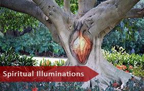 Spiritual Illuminations